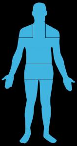 Three Pain Areas of Polymyalgia Rheumatica